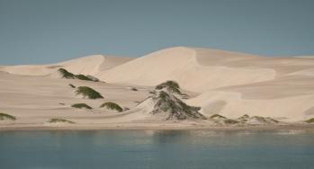 Isla Magdelena