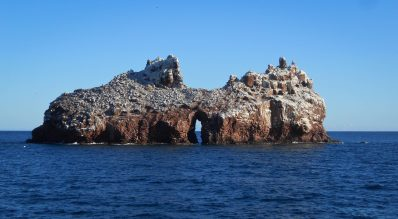 Part of Los Islotes
