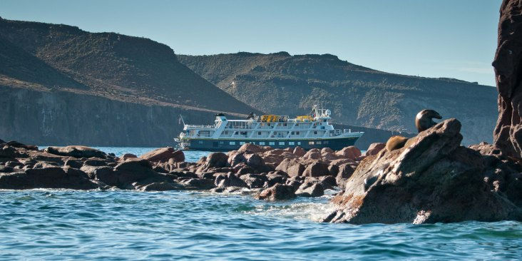 Our ship behind sea lions on the rocks