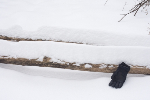 Snow piled high (glove for scale)